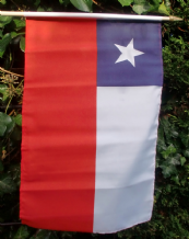 HAND WAVING FLAG - Chile